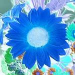 """Embossed & Alive - flower collage cool blue"" by mAsTeRpIeCe"