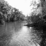 """Fall Stream"" by ryandonaldsonart"