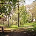 """Delaware Park Spring"" by FinneganPhotos"