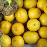 """Lemons"" by Newleaf"
