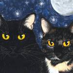 """Strangelings Felines, Black Cat Tortoiseshell Cats"" by tigerpixie"