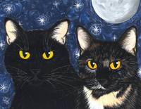 Strangelings Felines, Black Cat Tortoiseshell Cats