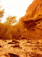 MILLCREEK CANYON MOAB