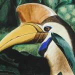 """""""hornbill"""" by hochstein"""