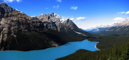 Peyto Lake Panorama