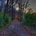 """autumn hdr"" by jforman"