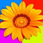 """""""Ganzania x 4"""" by flowercard"""