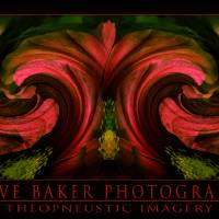 Abstract 106 Art Prints & Posters by Steve Baker, <i>Theopneustic Imagery </i>