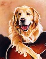 Musical Golden Retriever
