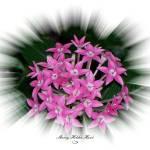 """""""Pink Floral Frame 1"""" by SherryHolderHunt"""