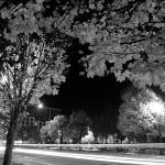 """front street portland oregon"" by portlandatnight"