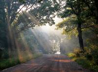 Sunbeam Road 3