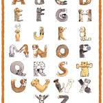 """""""ABC Dog Poster"""" by ShelleyDieterichs"""