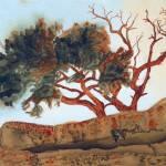 """North Rim Tree"" by ChristopherMcKellar"