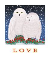 Love's Snowy Owls