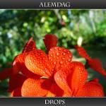 """Drops ( explore )"" by alemdag"