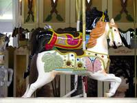 Horses on the Merry-Go-Round