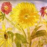 """Sunflower"" by magnoliadorn"