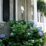 """""""Porch in Savannah"""" by magnoliadorn"""