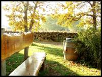 Winery Bench