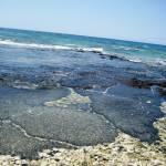 """""""Hawaiian Coast"""" by annakate"""