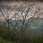 """Poetic Mountains"" by ArteZoe"