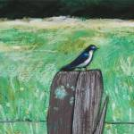 """Bird on Post"" by harryboardman"