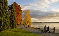 Late Afternoon at Greenlake