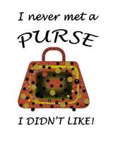 Eclectic Purse