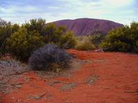 Ayers Rock desert foreground