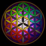 """Full Spectrum Flower of Life"" by infiniteeureka"