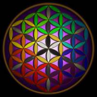 Full Spectrum Flower of Life