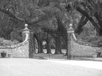 Entry Gate to Boone Hall Plantation