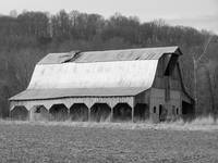 Abandoned Barn in Black & White