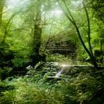 """""""Lovers Bridge & Waterfall at Dún na Rí"""" by Jarl-van-Hoother"""