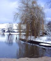 1067 Upstream of Mapledurham Lock in Winter