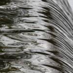 """""""flowing"""" by leoaltoriso"""