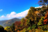 Blue Ridge Fall Foliage