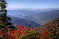 Blue Ridge Mountains II