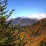 """Gold on the Blue Ridge"" by Cynthia_Burkhardt"