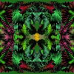 """Poinsettias and Holly 2-07"" by infinitefascination"