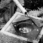 """Japanese Well"" by billneenan"