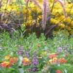 """""""Floral Garden"""" by Rad"""