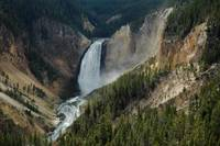 Lower Falls of the Yellowstone River YNP #1
