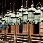"""Lantern Lineup"" by NotJustNinjas"