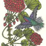 """Geranium and Hummingbird"" by MarilynMihmSuchan"