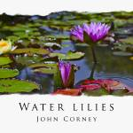 """Water-Lilies Poster"" by johncorney"