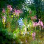 """Giverny spirit II"" by Woodsman"