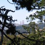 """View from Strawberry Hill, Golden Gate Park"" by irwinfamily"