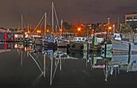 geelong by night 9